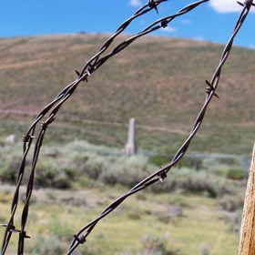 Photography: Bodie Graveyard